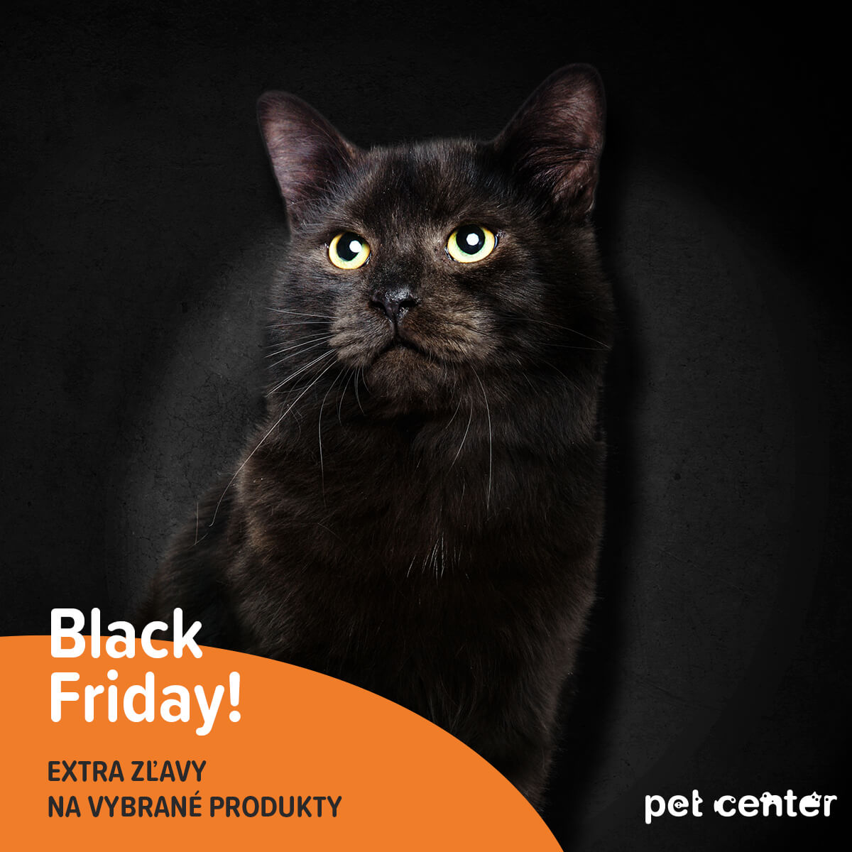 Black Friday v Pet Center